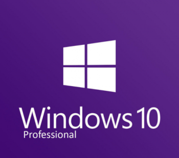 Windows 10 Pro 1903